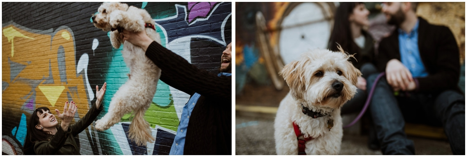 Dog Lovers Chicago Engagement Session This Is Feeling Photography